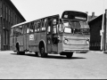 234-3a-Leyland-Panther-Hainje