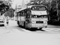 234-4a-Leyland-Panther-Hainje