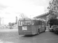 236-1a-Leyland-Panther-Hainje
