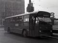 310-3a-Leyland-Leopard-Hainje
