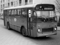 302-2a-Leyland-Leopard-Hainje