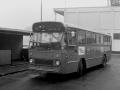 303-6a-Leyland-Leopard-Hainje