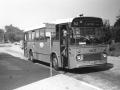 309-2a-Leyland-Leopard-Hainje
