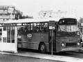 309-4a-Leyland-Leopard-Hainje