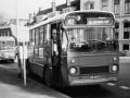 313-6a-Leyland-Leopard-Hainje