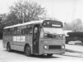 315-7a-Leyland-Leopard-Hainje
