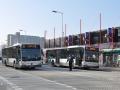 303-1 Mercedes-Citaro -a