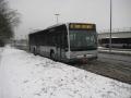 315-6 Mercedes-Citaro -a