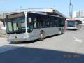 304-1 Mercedes-Citaro