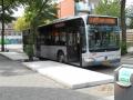 319-2 Mercedes-Citaro