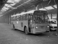 907-8 Leyland-Worldmaster-Hainje -a