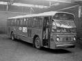 919-8 Leyland-Worldmaster-Hainje -a