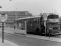 231-1 Leyland-Panther-a